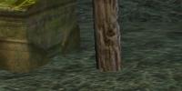 A crimson death adder