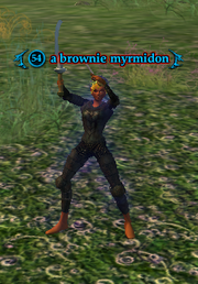A brownie myrmidon