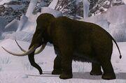 Race mammoth