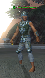 A Blackshield assassin (Timorous Deep) (human)