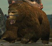 Trained bear (Thundering Steppes)