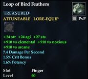 Loop of Bird Feathers