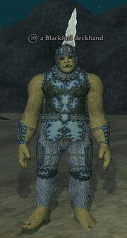 A Blackfurl deckhand (ogre)