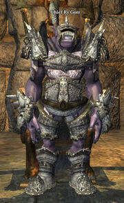 Chief Ry'Gorr (NPC)