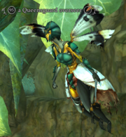A Queensguard overseer