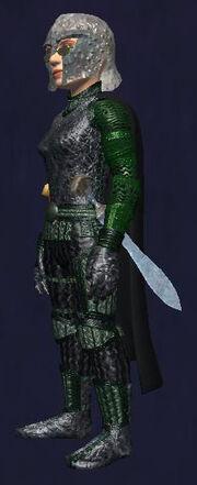 Gnomeland Head Protector (worn)