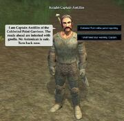 Knight-Captain Antillin