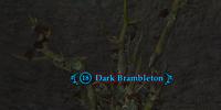 Dark Brambleton