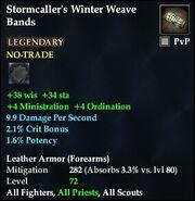 Stormcaller's Winter Weave Bands
