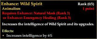 File:Fury AA - Enhance- Wild Spirit.jpg