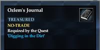 Ozlem's Journal