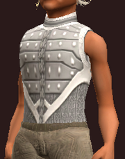 Forest Scion's Tunic of the Citadel (Equipped)