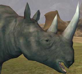 File:Race rhinoceros.jpg