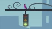 Bird perched on a traffic light EG2