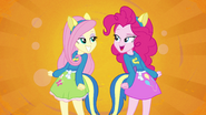 Fluttershy and Pinkie Pie splash screen EG