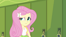 "Fluttershy ""you could say that"" EG"