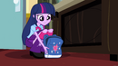 Twilight sets her bag down next to Celestia's desk EG
