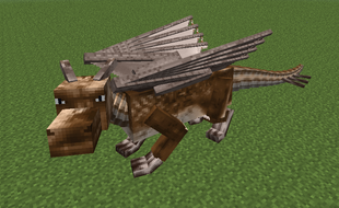 Brown dragon