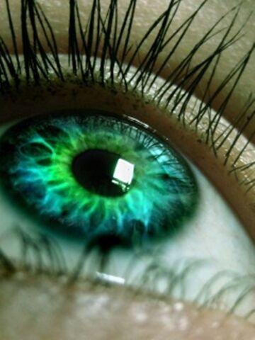 File:Green eyes.jpg