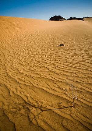 Desert Sand by ChristopheCarlier