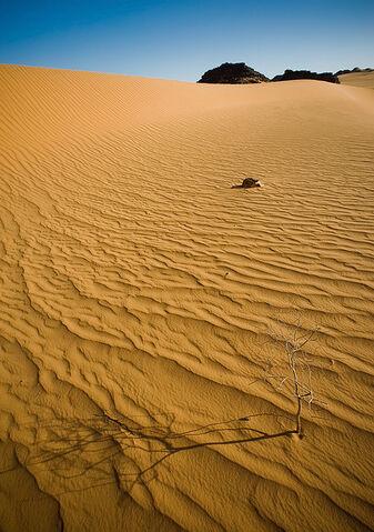 File:Desert Sand by ChristopheCarlier.jpg