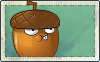 File:Hazelnut Seed Packet.png