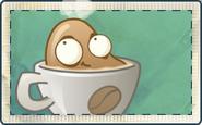 Coffee Seed Packet