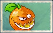 Orange Seed Packet