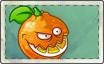 File:Orange Seed Packet.png