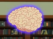 Gran cerebro