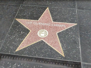 TheGurningChimpsEstrellaGTAV