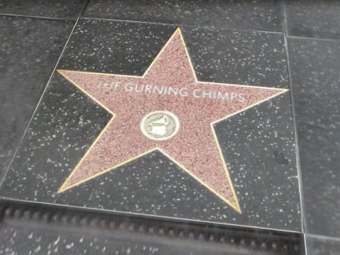 Archivo:TheGurningChimpsEstrellaGTAV.png