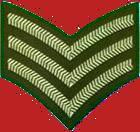 Archivo:Veteran icon gte.png