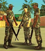 Archivo:MiliciaVCVCS.JPG