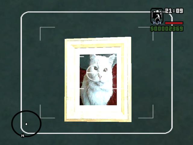 Archivo:GTA SA Gato.PNG
