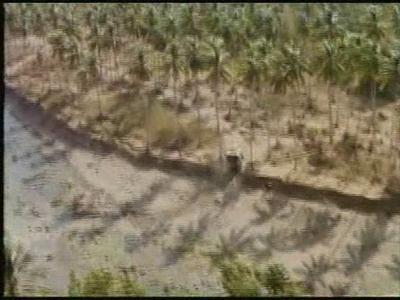 80th Vice Desaparecida en Vietnam. 2ª parte. Persecución XIV