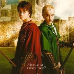 Póster de Quidditch