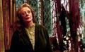 McGonagall pelo suelto.PNG