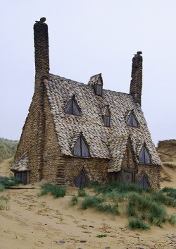 250px-DH - Shell Cottage (film version) 2.jpg