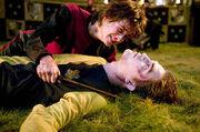 P4 Cedric finado