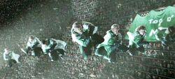 Irish National Quidditch team.jpg