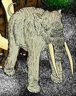 Elephas namadicus