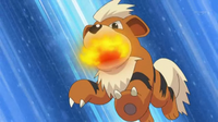 EP787 Growlithe.png