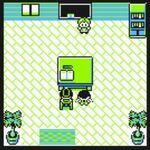 Escuela Pokémon de Ciudad Verde (Amarillo)(2)