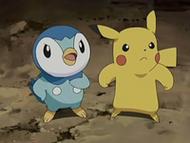 EP542 Piplup y Pikachu