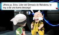 Presentación Erico ROZA