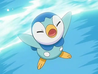 Archivo:EP544 Piplup usando torbellino.png