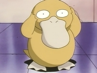 Archivo:EP028 Psyduck.png