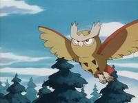 Archivo:EP182 Noctowl volando.png