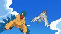 EP699 Archeops con el Tranquill de Ash volando
